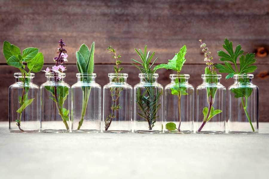 Guide complet des huiles essentielles indispensables pour l'hiver — Spiritualité • energies • litothérapie