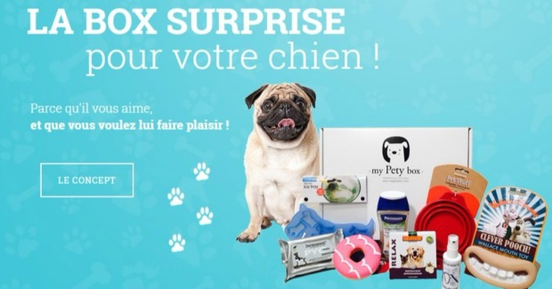 My-Pety-Box-La-box-surprise-pour-chien