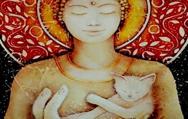 Les chats sont bien plus que des animaux de compagnie, ils partagent une connexion spirituelle avec nous